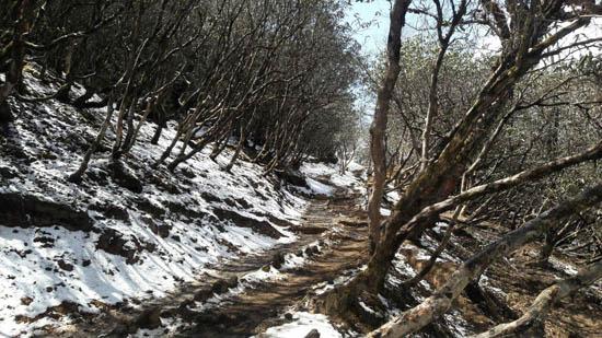 مسیر تینگ بوچه امروز