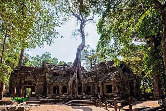 معبد تاپروم