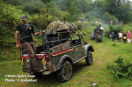 تور سافاری جواهردشت - سافاری در جنگل