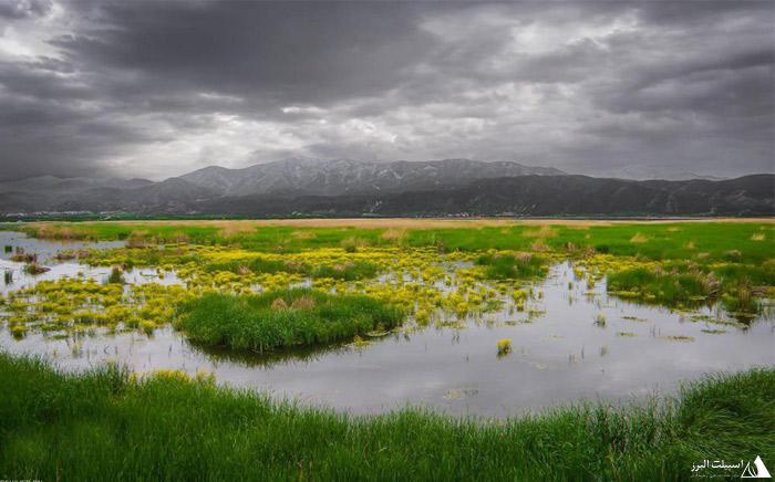 دریاچه زریوار کردستان
