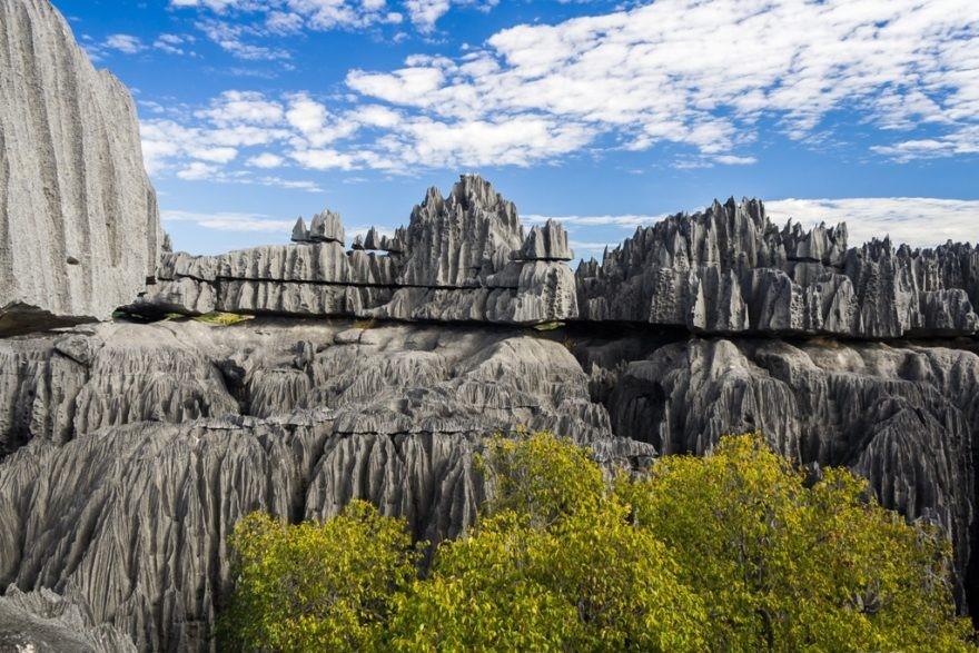جنگلهای سنگی تسی ری بیهینا