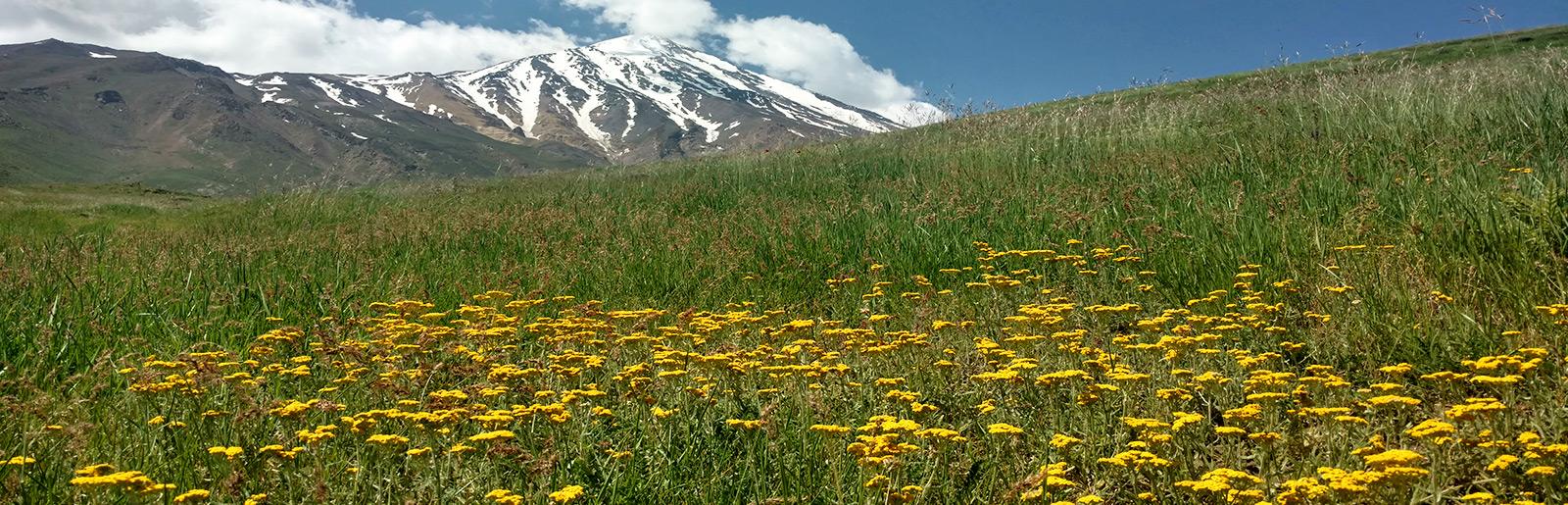 Damavand Circuit Trekking and Tehran city Tour