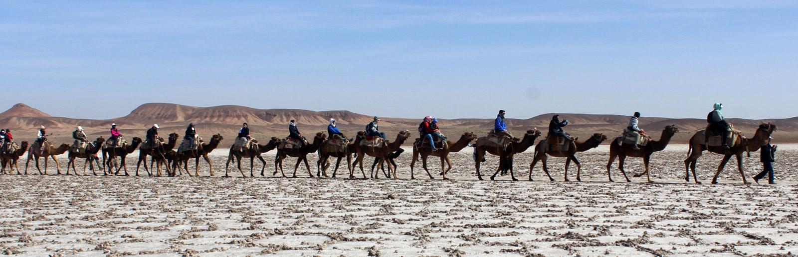 Desert Tour of Maranjab; Multi Activity Adventure